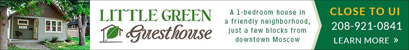 littlegreenguesthouse.com